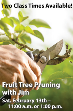 Fruit Tree Pruning with Jim